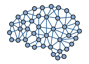 A brain-shaped cluster of interconnected nodes. Each node is a blue circle and most of the nodes are connected to others that are adjacent to it.